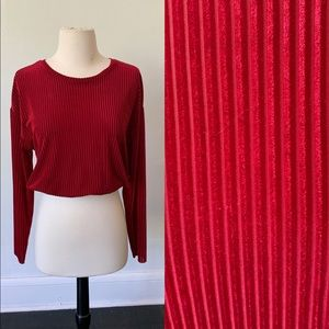 ZARA Burgundy Velvet Striped Crop Top
